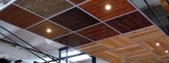 Plafond for Modele de plafond suspendu